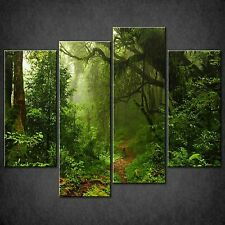 PATH IN FOREST SPLIT CANVAS WALL ART PICTURES PRINTS LARGER SIZES AVAILABLE