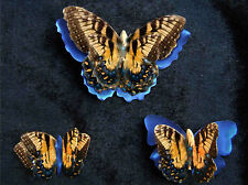 Printed, Die Cut Paper Butterflies Swallowtail Design