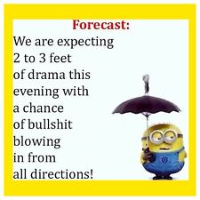 4x4 Fridge Magnet Minion Meme Silly Funny Humor Forecast