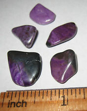 """5 RARE!! .5""""-.6"""" TUMBLED POLISHED NATURAL SUGILITE CRYSTAL STONES S. AFRICA 7g"""
