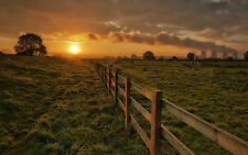 Framed Print - Wooden Fence Snaking Through the English Countryside (Picture)