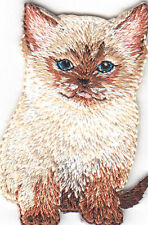 KITTEN - CATS - PETS - ANIMALS - CUTE CRITTER/Iron On Embroidered Applique Patch