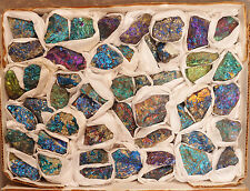 49 Piece Colorful Shiny Peacock Ore Chalcopyrite Bornite Specimens Half Flat Mex