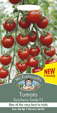 Mr Fothergills Tomato Suncherry Smile F1 Seed