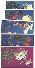 "China 1960s ""Chinese Chrysanthemmums"" set of 5 cards"