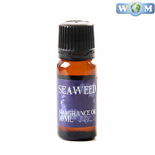 Seaweed 10ml Fragrance Oil for Soap, Bath Bombs (FO10SEAW)