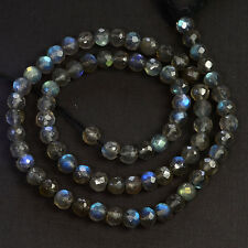 "5MM Strong Blue Flash Labradorite Faceted Round Rondelle Bead 14.25"" strand"