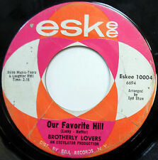 BROTHERLY LOVERS 45 Our Favorite Hill / If You Need A Love Song PSYCH Pop c1678