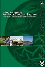 Walking the Nexus Talk: Assessing the Water-Energy-Food Nexus in the Context of