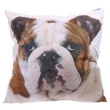 Kissenbezug+Bulldogge+50x50+Dekokissen+Kissen+mit Innenkissen+Hund+Englische+