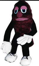 Red E. Raisin Ventriloquist Puppet and Raisin' the Word Script Book
