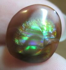 Multicolored MEXICAN  Free Form Fire Agate Tumbled Gemstone Not Enhanced 14x13