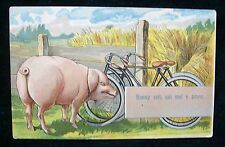 Postcard Honni soit Qui Mal Y Pense Porc French Pig Evil be Him who Evil Thinks