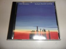 Cd  Picture Perfect Morning von Edie Brickell