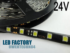 5M 24V Waterproof 5050 SMD Cool White 300 LED Strip Light Lamp + Tracking number