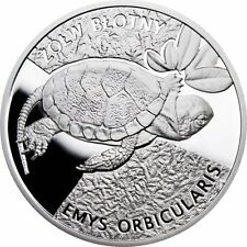 """Poland Turtle 2010 """"2"""" Limited Edition Ag"""