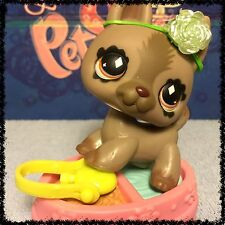 Littlest Pet Shop LPS GRAY FANCIEST GERMAN SHEPHERD DOG DIAMOND EYES # 491