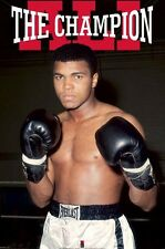 MUHAMMAD ALI CHAMPION 24x36 poster GREATEST BOXING PEOPLE'S CHAMP CASSIUS CLAY!!