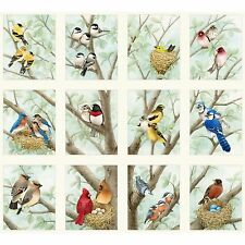 Fabric Bird Quilt Panel on Cream Cotton Wild Birds 12 Squares 21x22 Elizabeth BI