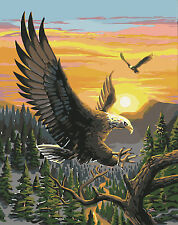 16X20'' Acrylic DIY Eagle Flying Paint By Number kit Oil Painting On Canvas