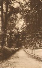 early 1900s black and white postcard - oxford road tilehurst