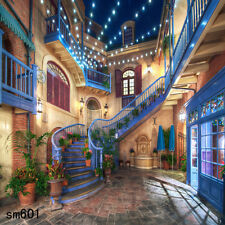 Outdoor  Street Stairs 10x10  FT CP SCENIC PHOTO BACKGROUND BACKDROP sm601
