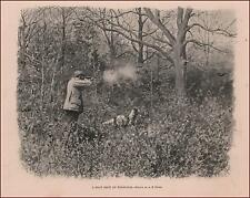HUNTING, SHOOTING WOODOCK BIRDS with Setter Dog by A B Frost, antique print 1897