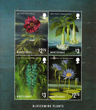 Montserrat 2013 MNH Blossoming Plants 4 M/S Flowers Black Pirate Blue Water Lily