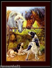 English Springer Spaniel Print Dog Horse Art Picture