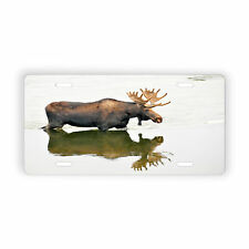 Moose in the Water Vehicle Vanity License Plate