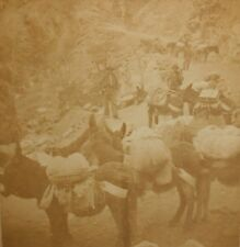 OLD VINTAGE STEREOVIEW PHOTO GOLD RUSH MINERS BURRO TRAIN LEADVILLE COLORADO