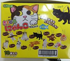 Re-Ment Miniature Cat Animal Series Nyanko Mascot  2010 Full set of 10 pcs Rare