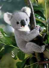 Kosen Koala 4180 Plush Stuffed Animal Toy New Christmas Gift Made in Germany