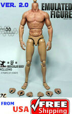 1/6 Scale Muscular Nude Figure body ver 2.0 ZC TTM19 Fit Wolverine Head ❶USA❶