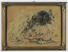 Sehr schönes expressionistisches Hundeportrait eines Pekinesen. 20er Jahre