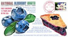 COVERSCAPE computer designed July - National Blueberry Month event cover