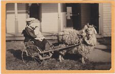 Real Photo Postcard RPPC - Girl and Doll in Goat Wagon - Great Goat!
