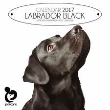Black Labrador Dog Calendar 2017 with free pull out planner