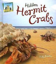 Hidden Hermit Crabs (Perfect Pets)