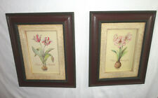 Home Interiors Set of 2- Tulips & Amaryllis  Pictures  Gorgeous    18'' x 22.5''