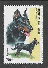 Dog Head Body Portrait Postage Stamp BEAUCERON BERGER DE BEAUCE Chad 1999 MNH