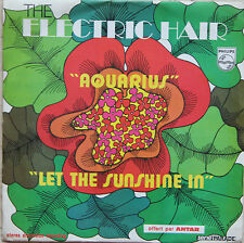 """Vinyle 45T The Electric Hair feat. the Moog Synthesizer  """"Aquarius"""""""
