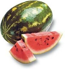 100 CRIMSON SWEET WATERMELON Melon Seeds + Free Gift