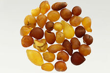 Lot of 31 Natural Raw Rough Rare Drops Nugget Genuine BALTIC AMBER 15g s170202-7