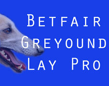 Make Money - Greyhound Lay Pro Betfair Betting System Guide