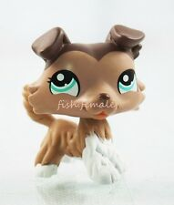 #1330 Mocha & White Collie Dog Puppy Blue Eyes Hasbro Littlest Pet Shop LPS Toys
