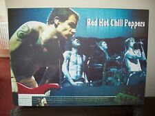 red hot chilli peppers canvas picture