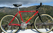 Vintage 86  Ritchey Ascent Comp Hand Made Classic By Tom Ritchey -Rolling Art