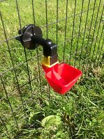 Large Auto Cup Drinker for Poultry / Chicken /Chick Cage Hatching eggs Automatic