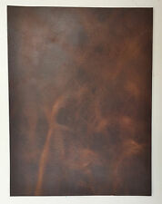 HORWEEN VEG TAN LEATHER 2.0-2.2 MM THICK 1 @ 300MM X 220MM BROWN NUT DERBY SIDES
